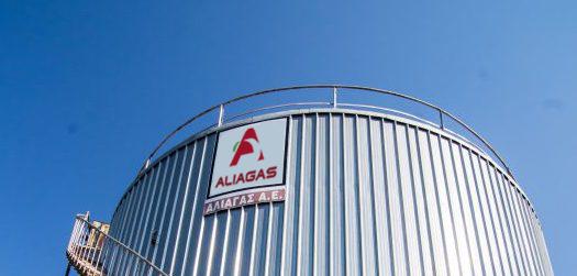 aliagas-asfaltika-galaktomata-7-532×532-1